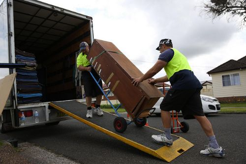 whether to use a professional removals company or not